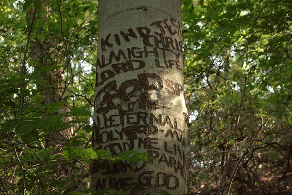 God_tree