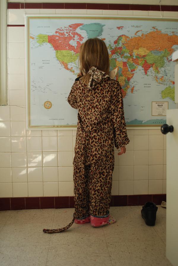 Baby_cheetah_2